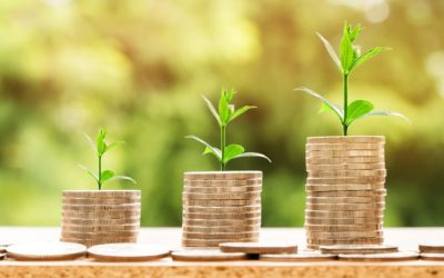Nachhaltigkeit: Der nächste große Markttrend?