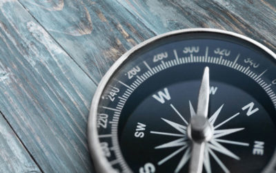 Nachhaltige Investments: Studie zeigt Widerstandskraft in der Krise