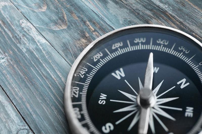 Compass OMS fischfang