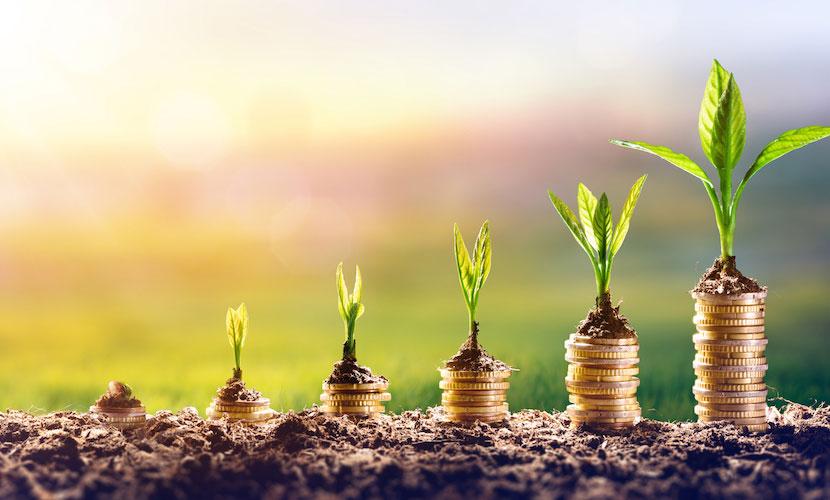 Planted Money OMS Kunststoff